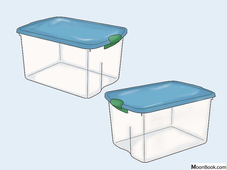 以Breed Hamsters Step 6为标题的图片
