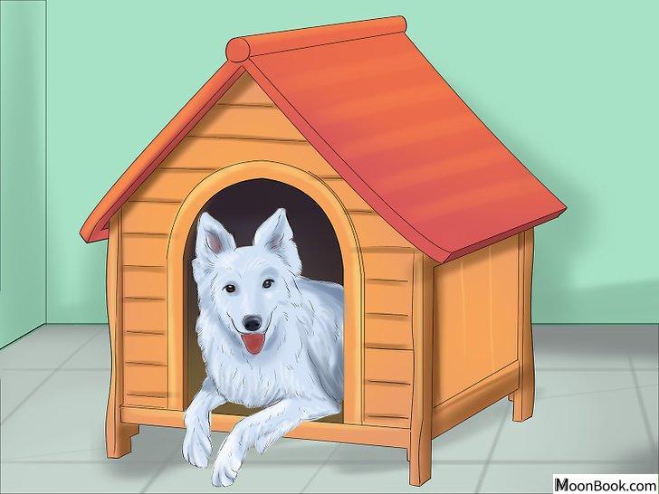 以Crate Train Your Dog or Puppy Step 11为标题的图片