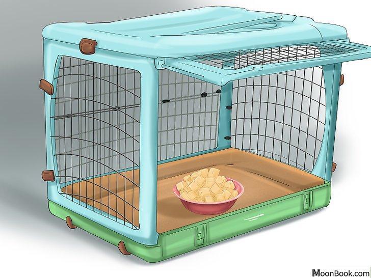 以Crate Train Your Dog or Puppy Step 14为标题的图片