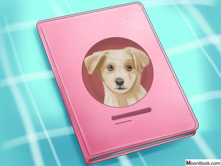 以Crate Train Your Dog or Puppy Step 30为标题的图片