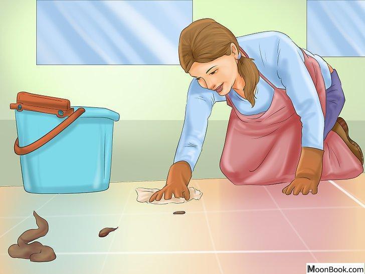以Crate Train Your Dog or Puppy Step 33为标题的图片