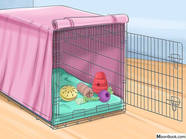以Crate Train Your Dog or Puppy Step 4为标题的图片