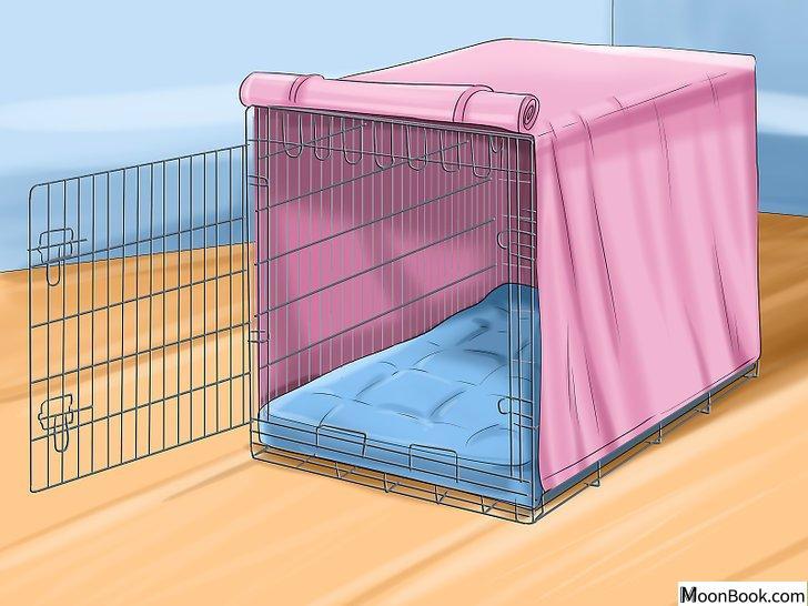 以Crate Train Your Dog or Puppy Step 5为标题的图片