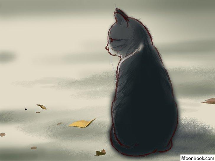 以Deal With a Cat Scratch Step 2为标题的图片