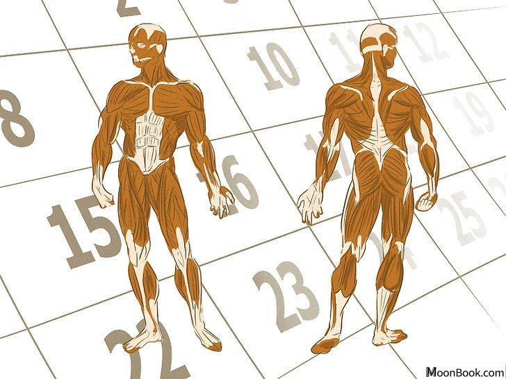 以Gain More Muscle Mass and Strength Step 9为标题的图片