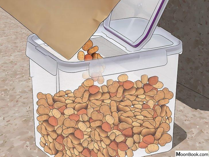 以Get Rid Of Roaches In an Apartment Step 14为标题的图片