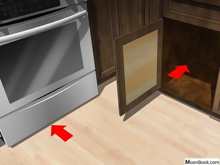 以Get Rid Of Roaches In an Apartment Step 3为标题的图片