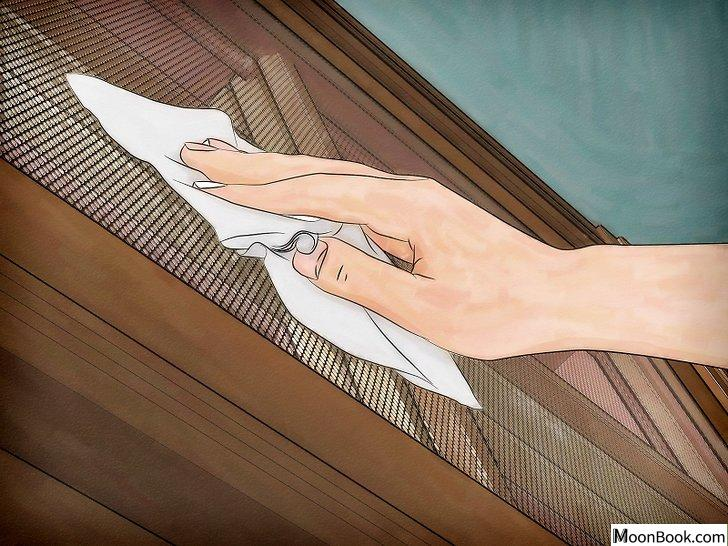 以Get Rid of Stink Bugs Naturally Step 15为标题的图片