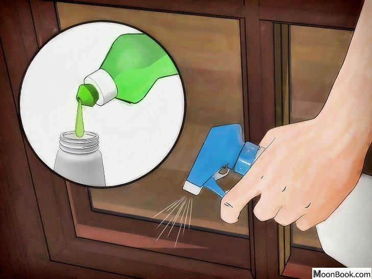 以Get Rid of Stink Bugs Naturally Step 5为标题的图片