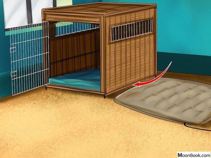 以Get Your Dog to Sleep Step 1为标题的图片