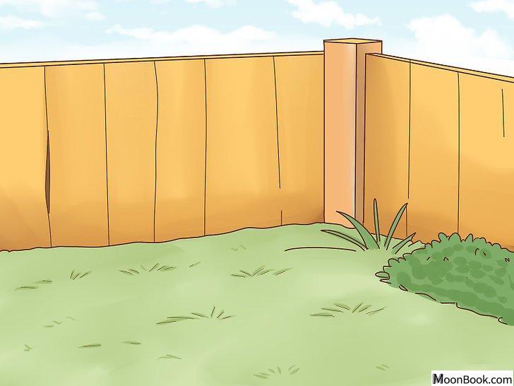 以House Train Your Dog Step 4为标题的图片