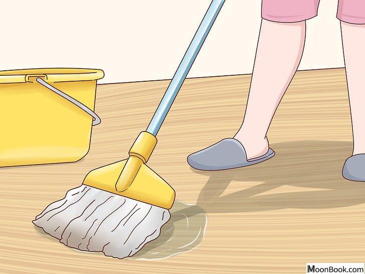 以House Train Your Dog Step 7为标题的图片