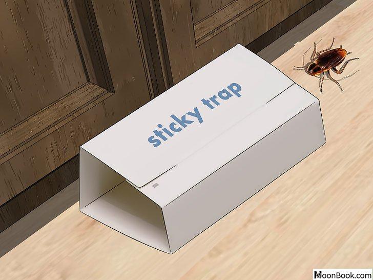 以Kill German Roaches Step 3为标题的图片