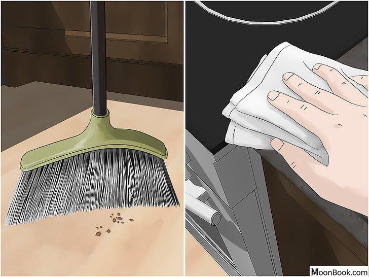 以Kill German Roaches Step 7为标题的图片