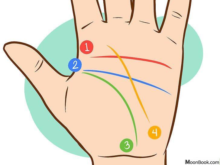 以Read Palm Lines Step 2为标题的图片