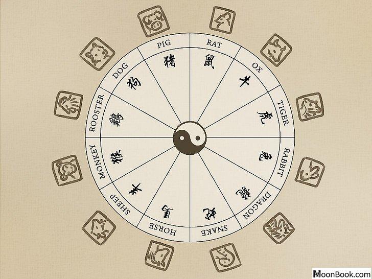 以Read Your Chinese Horoscope Step 12为标题的图片
