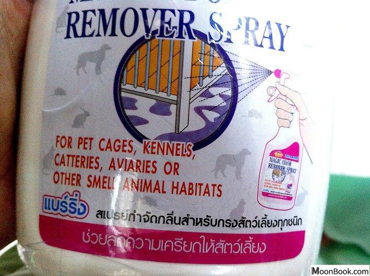 以Remove Cat Urine from Wood Floors Step 2为标题的图片