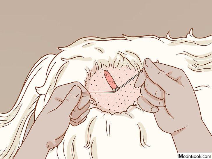 以Remove a Dog's Skin Tags at Home Step 7为标题的图片