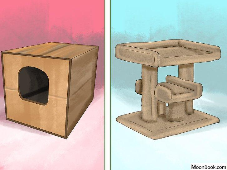 以Retrain a Cat to Use the Litter Box Step 11为标题的图片