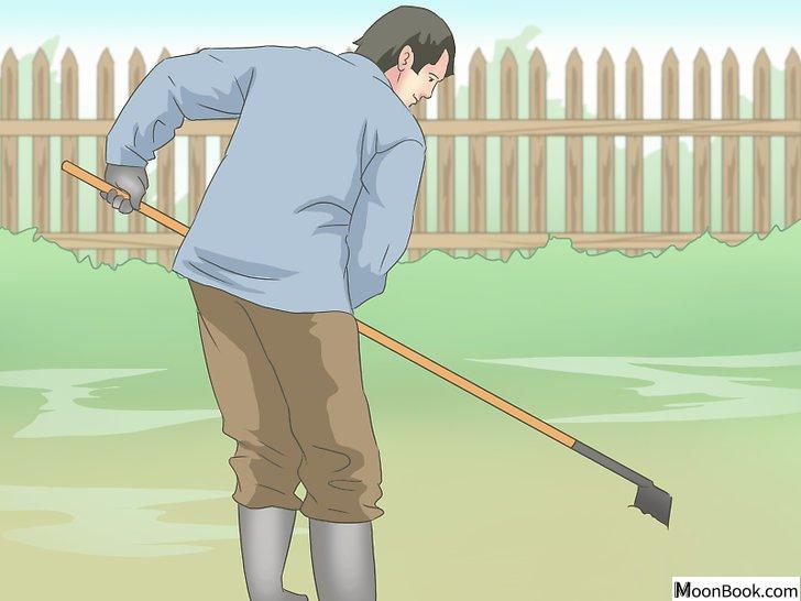 以Work Your Back Muscles at Home Step 20为标题的图片